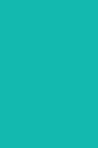 turquoise rectangle